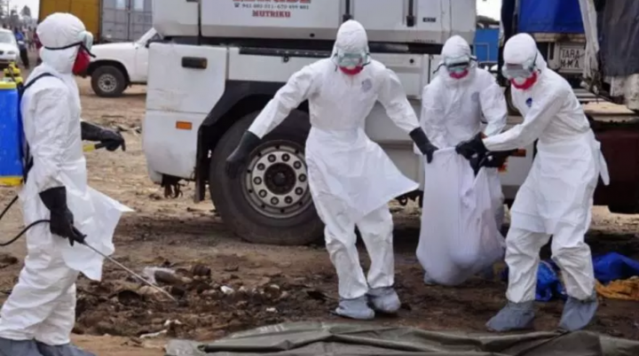 Torna la paura per Ebola: tre morti per un focolaio nel ...